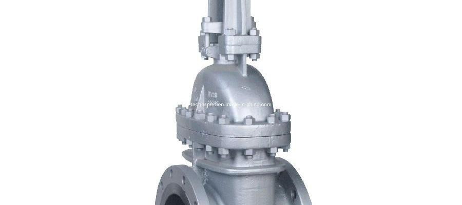 API 609 gate valve